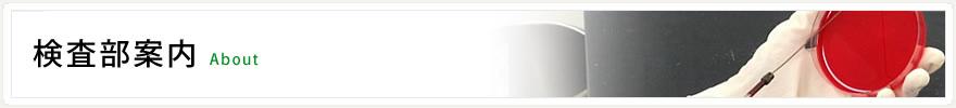 久留米大学病院 臨床検査部 公式ホームページ official website :  検査部案内